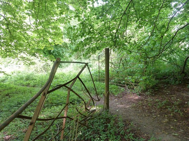 Old metal fence and gate, Park Wood