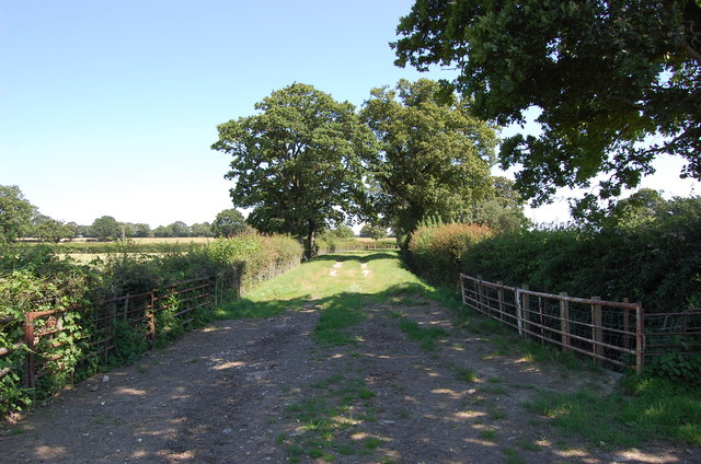 Farm Track, off Staplehurst Road