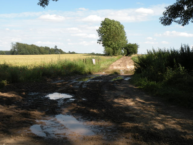 A farm track just north of Gasthorpe