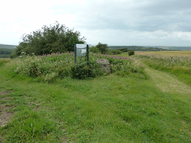 Information board for Lullington Heath National Nature Reserve