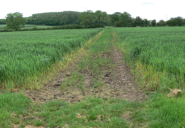 Bridleway to Ashby Pastures