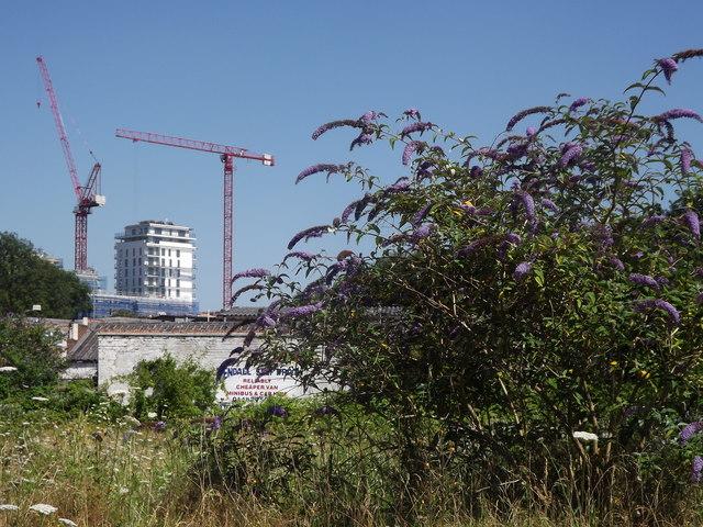 Woking's Rising Skyline