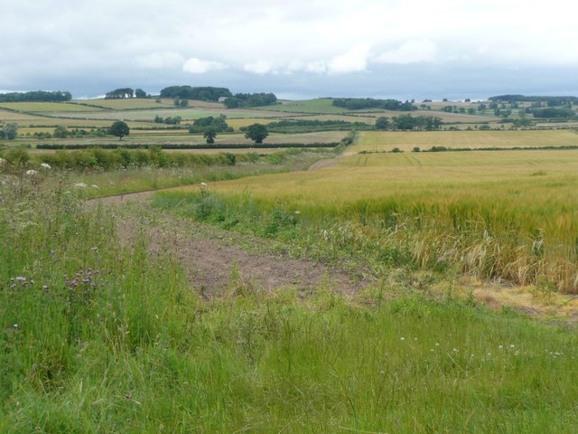 Arable land in the Aln valley