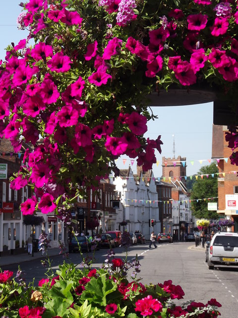 Blooming Guildford
