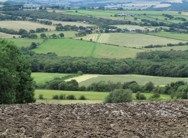 Ploughed field descending to valley of River Browney