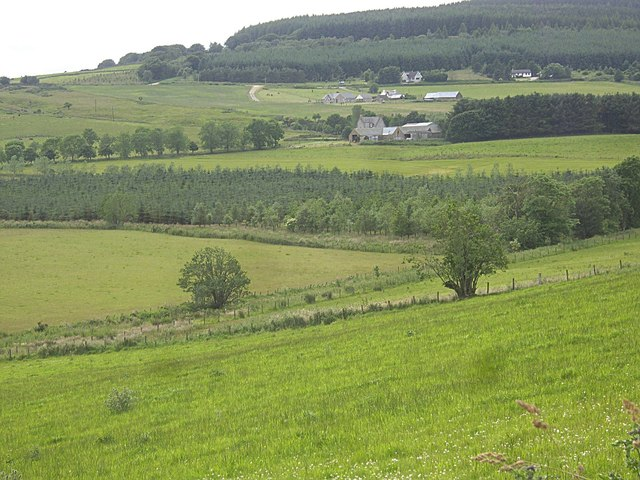 View across the Rumblie Burn and a windbreak plantation