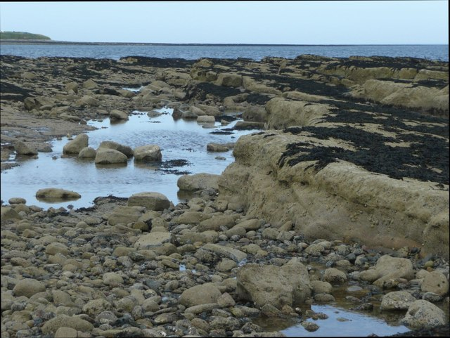 Rock pools on Marden Rocks
