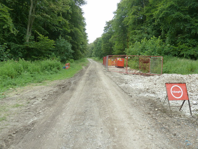 Water supply improvement works in Friston Forest