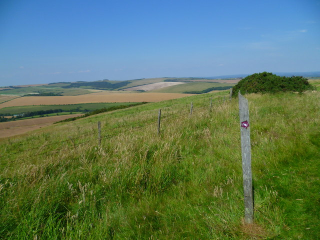 Marker post for the South Downs Way