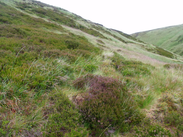Hillside above Danger Point near Glen Lethnot