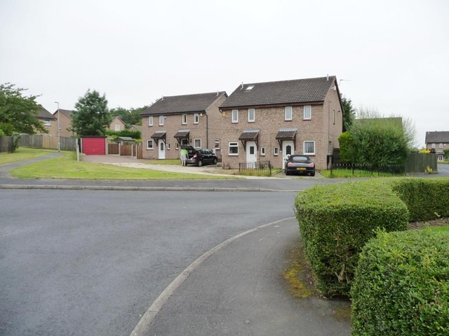 Houses in the estate named for trees, Whinmoor