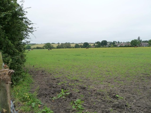 Farmland on the west side of Stockheld Lane