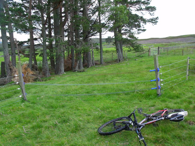 Electric gate near Arsallary in Glen Esk in Angus