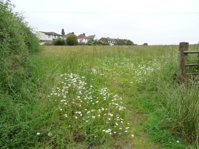 Flowery field entrance off Stockheld Lane