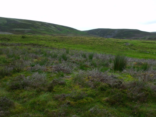 High ground north of Arsallary near Glen Esk in Angus
