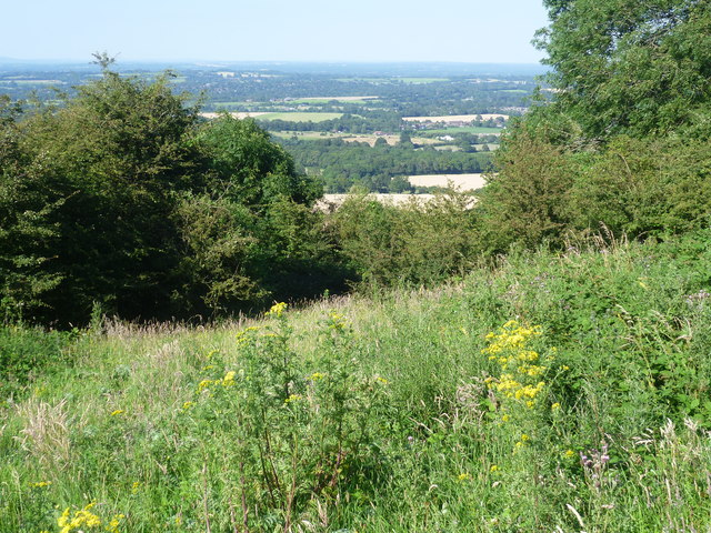 View from the South Downs