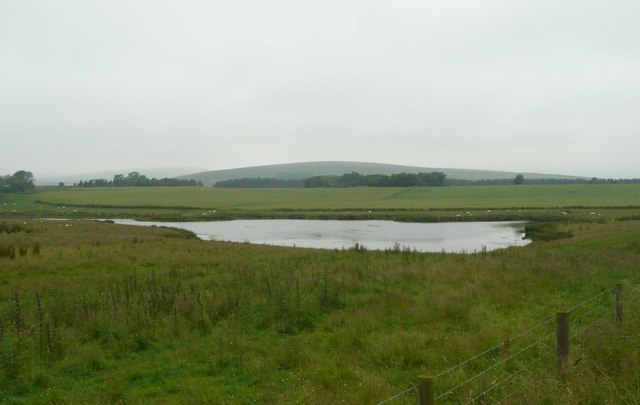Pond beside Roddam Bog Plantation