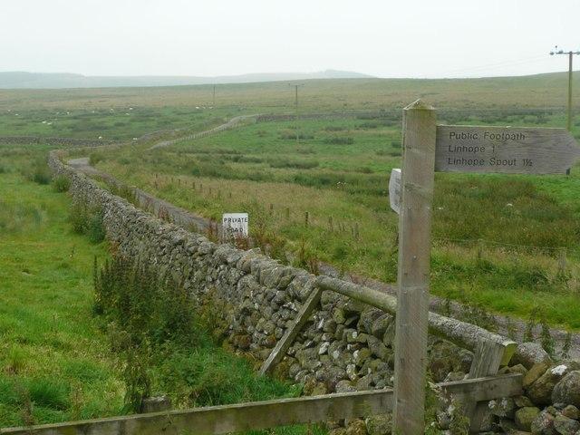Track to Alnhammoor