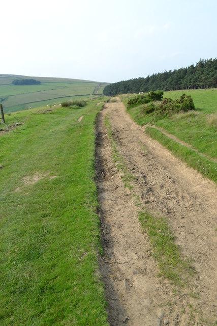 Roman Road near Wooler Knoll