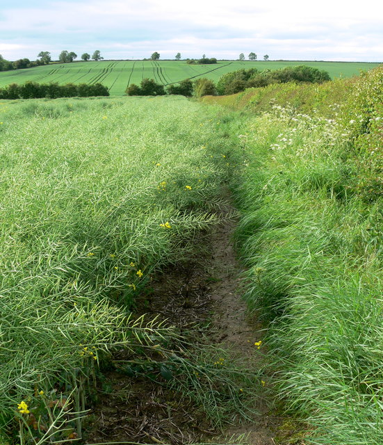 Leicestershire Round Footpath