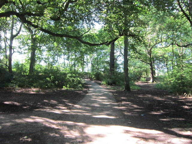 A path leading to Middleton park