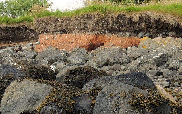 The loughshore, Rough Island near Comber (2)