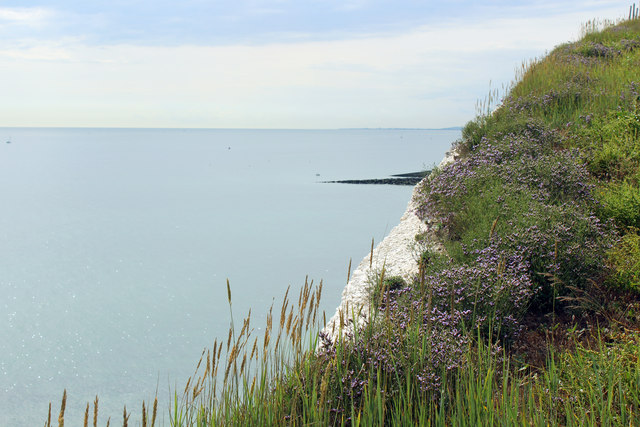 Edge of cliff at Saltdean