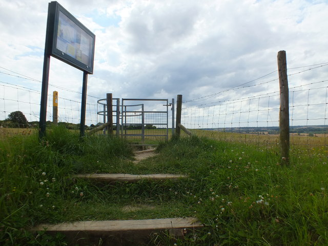 Steps and Gate