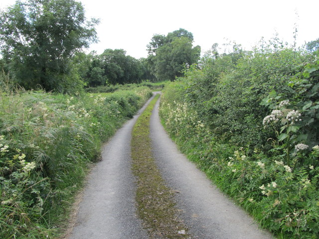 Minor road in the Townland of Drumgill