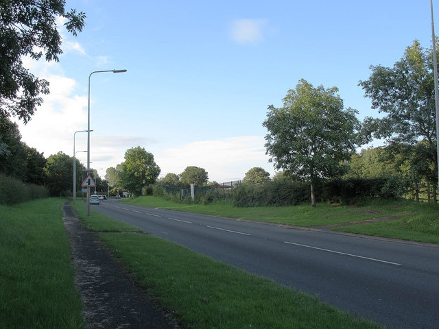 Old Mill Road