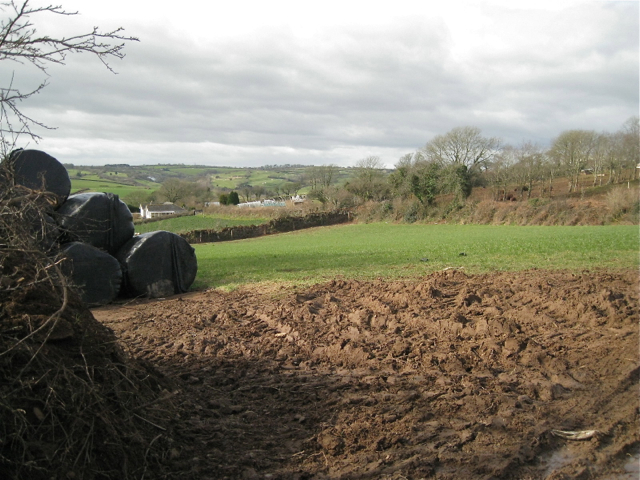 Corner of a small field with bales, Dittisham Farm