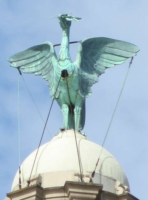 The Liver Bird on the Liver Building