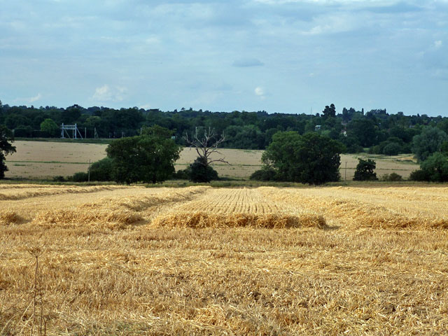 View towards Ingatestone