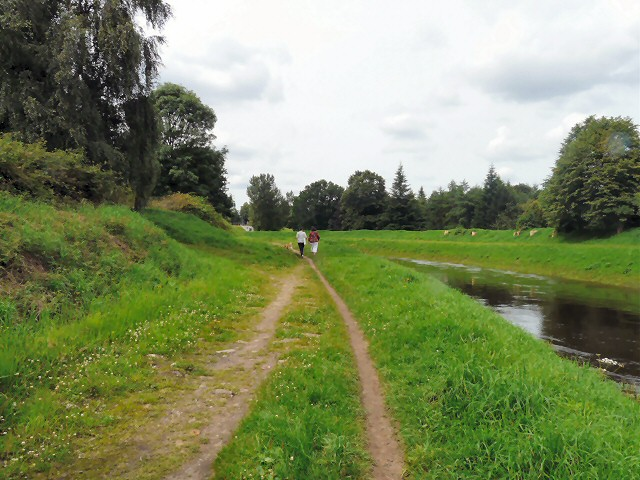 Dog walkers on the Trans Pennine Trail