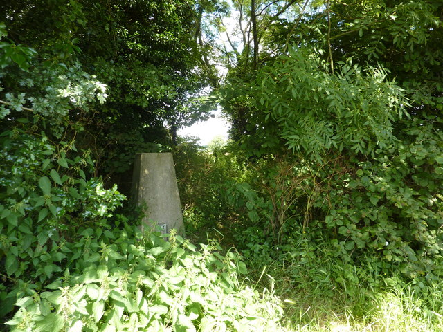 Trig point east of Hickingwood Farm