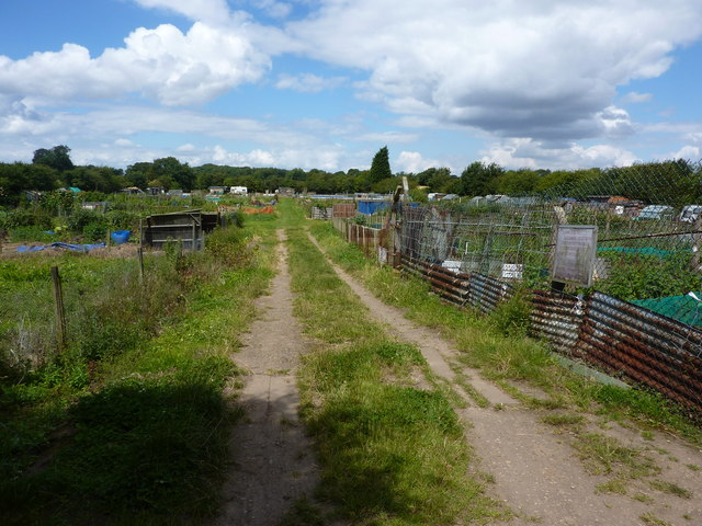 Allotments, Clowne & District Gardeners' Association