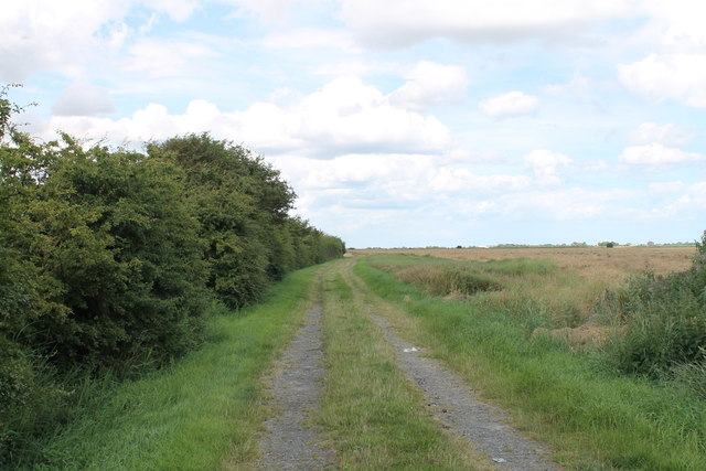 Farm Track off Marsh Lane