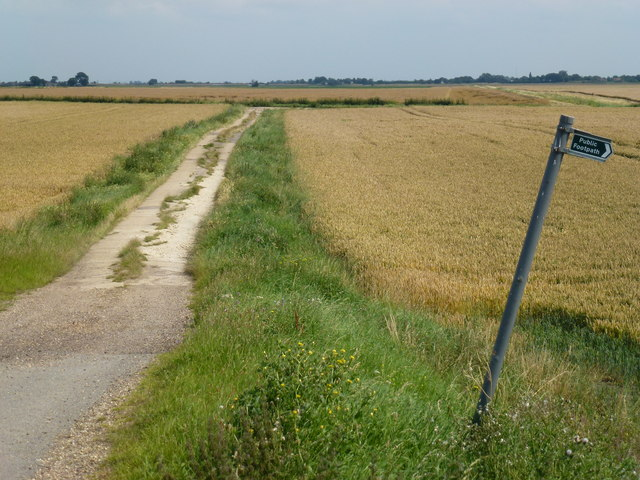 Track onto Curf Fen near Chatteris
