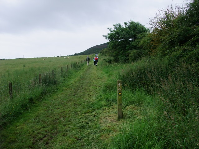 St Cuthbert's Way on the slope of the Eildon Hills