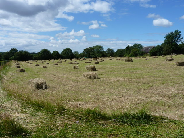 Proper, old-style hay bales