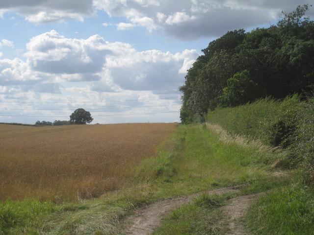 Bridleway to Moorhouse