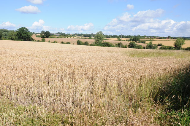 Arable land at Sambourne