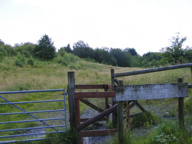 Baggeridge Conservation Area