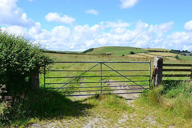 Gate and field near Garth Fawr farm