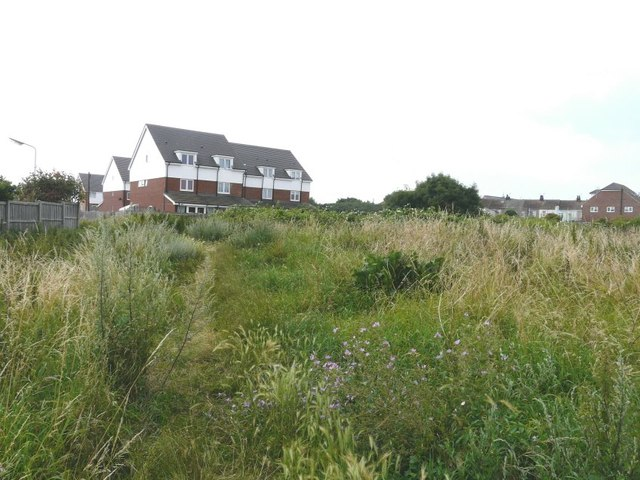 Backs of houses in Mount Field, Queenborough