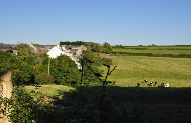 South Hams : Grassy Hillsides