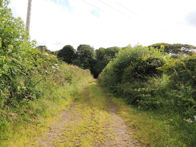 Southern Upland Way near Lime Kiln Wood