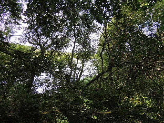 Culhorn Loch