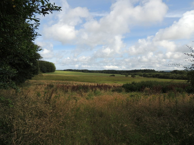 Farmland and Woodland at Big Plantation