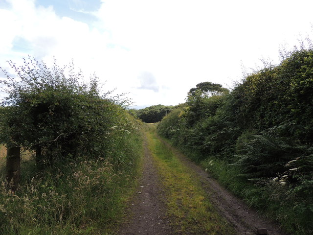 Southern Upland Way near Big Plantation